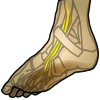 icon_foot